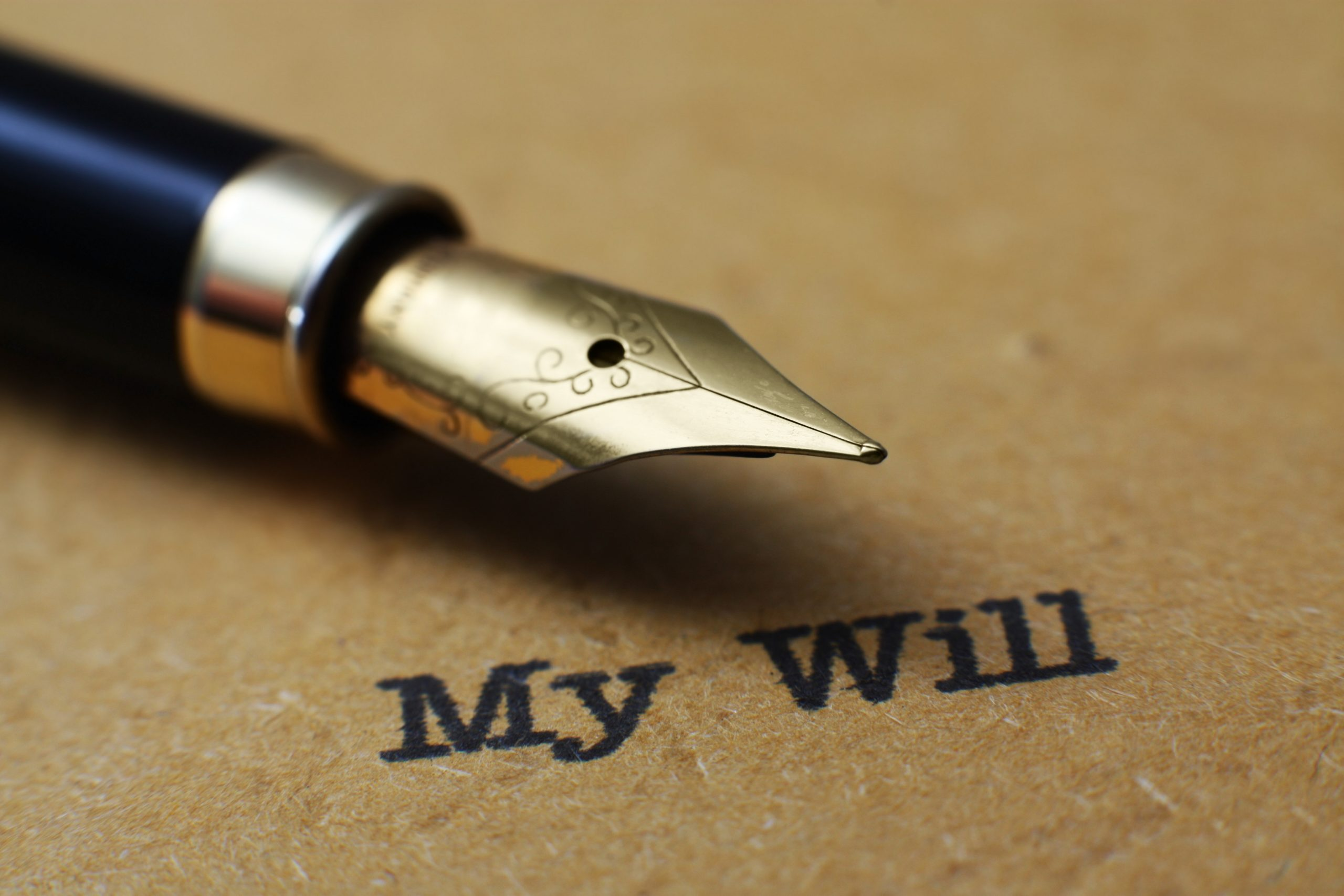Fountain pen with the words My Will