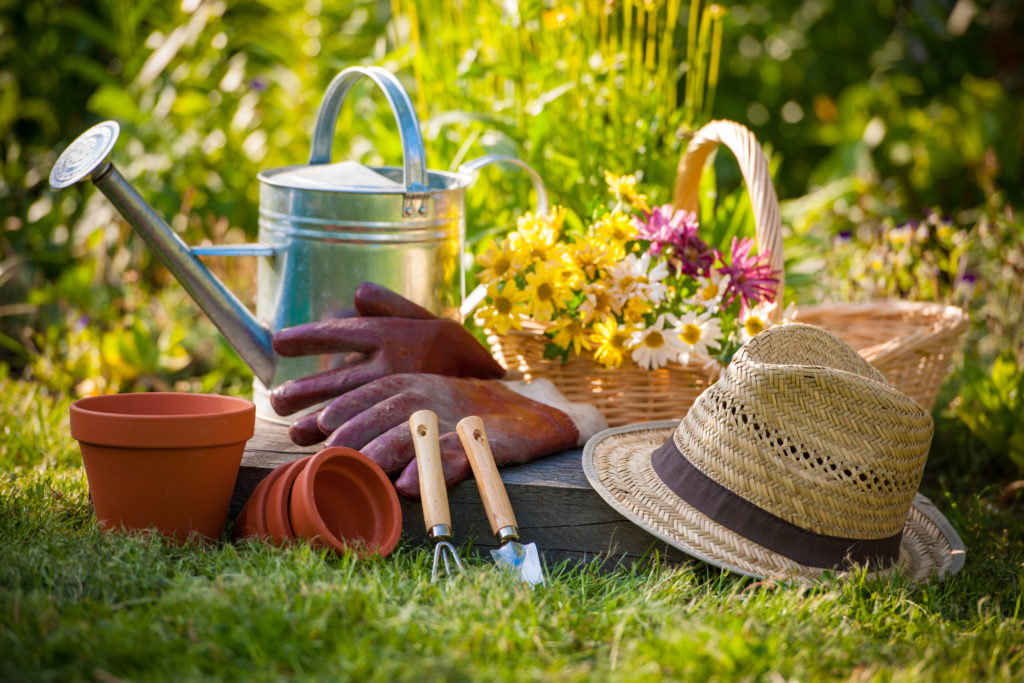 Photo of gardening equipment and flowers in a basket