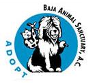 Baja Animal Sanctuary, Past Member