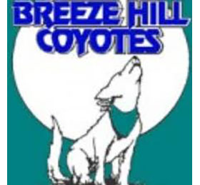 Breeze Hill Elementary, PTA (past)